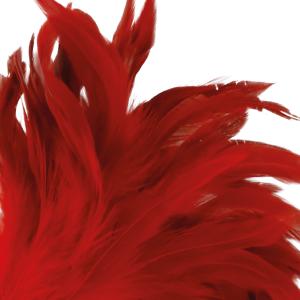Piumino rosso 24cm - Darkness