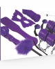 BDSM Fetish Kit Viola 8pz - Sexy Shop